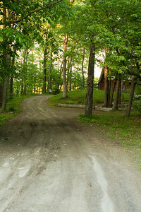 Looking up the driveway towards the house.