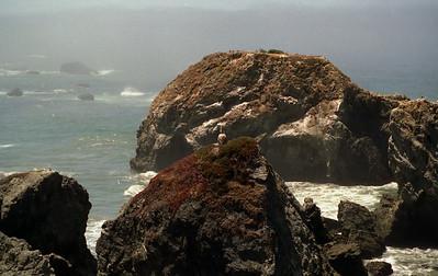 1994 - California