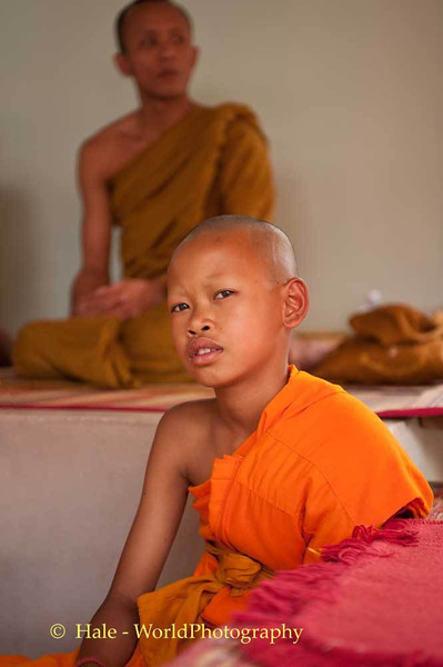 A Young Novice Monk At Relative's Funeral