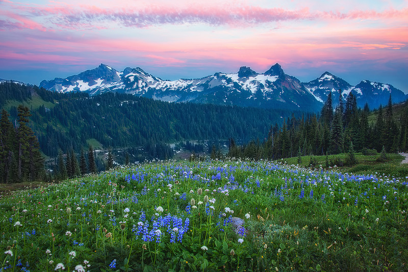 Sunset @ Mount Rainier National Park