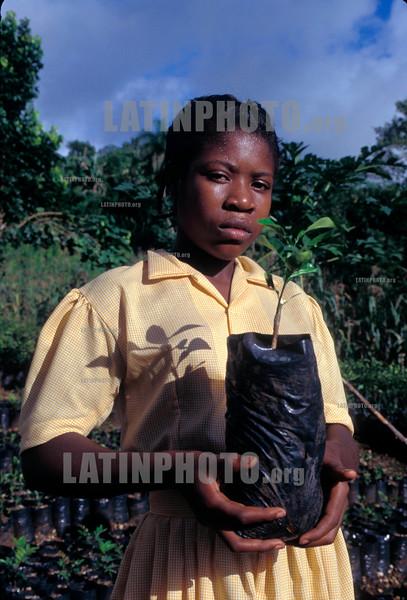 Haiti : Joven muestra un pequeno arbole por plantar en un programa de reforestacion . JACMEL. / YOUTH WITH SMALL TREE TO PLANT IN A REFORESTATION PROGRAMME. JACMEL. / Eine Schülerin zeigt im Rahmen eines Aufforstungsprogramms einen kleinen Baum. © Julio Etchart/LATINPHOTO.org