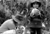 """Argentina :  Cosecha en la comunidad el Churcal. El riego de estos cultivos se realiza con las aguas del rio Juella. / Father and son during harvest. Juella is a small town in Jujuy province at northwest of Argentina. It is part of """"La Quebrada de Humahuaca"""" named Cultural Heritage of Humanity by UNESCO. / Argentinien: Vater und Sohn während der Melonenernte in Juella. Landwirtschaft. (B/W) ©  Andres Lofiego/LATINPHOTO.org"""
