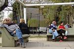 Argentina  : Jubilados descansando en una plaza en la ciudad de Tigre . / Argentina : pensioners. / Argentinien : Rentner. Pension�re sitzen im Park. � Soledad Aznarez/LATINPHOTO.org