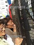 Argentina  : Simpatizantes aguardan la salida de Kirchner luego de asumir como Presidente de la Nacion en el Congreso Nacional . / Argentina : Kirchner supporters. Kirchner�s supporters wai ...