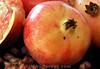 """Zypern: Granatapfel, ein Mitbringsel der Liebesgöttin """"Aphrodite"""". Nach altem Brauch wird dieser """"Apfel"""", ein Symbol für Fruchtbarkeit, an einer griechisch-zypriotischen Hochzeit vor frisch Vermählten auf den Boden geschmettert, so dass die Schale aufresst und die Frucht un ihre unzähligen Samen zerfällt. Granatäpfel. Südfrüchte. Exoten. Obst. Ernährung. Nahrung.<br /> © Andrea Hunziker/IMAGOpress.com"""