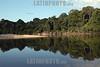 Brazil:  Amazonas . jungla. selva. / Brazil: Amazonas river. rain forest. / Brasilien : Amazonas - Gebiet. Urwald. Fluss. Regenwald.<br /> ©  Angelo Lucas/LATINPHOTO.org