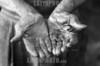 Republica Dominicana - Barahona 15/09/03 : En varias zonas de Republica Dominicana existen plantaciones de cana azucarera . En estos sitios trabajan principalmente Hiatianos , en condiciones de explotacion y llevando una vida miserable. En la imagen las manos de un haitiano quien usa un machete durante 13 horas diarias. manos de un obero. / Dominican Republic : black worker hands on a sugar plantation. / Dominikanische Republik : Ein schwarzer Arbeiter zeigt seine auf der Zuckerplantage abgenutzen Hände . Arbeit. Job. (B/W)<br /> ©  Orlando Barria/LATINPHOTO.org