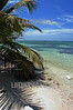 Mexico: Playa de Mahahual , Quintana Roo, Mexico . turismo. playa arenosa. / Mexico: beach near Mahahual. / Mexiko: Strand mit Palmen bei Mahahual. ©  Rolando Cordoba/LATINPHOTO.org