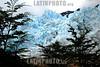 Argentina : Glaciar Perito Moreno, provincia de Santa Cruz. / Argentina: Perito Moreno's glaciar prov de Santa Cruz. / Argentinien: Der Gletscher Perito Moreno in der Provinz Santa Cruz. © Nicolas Pousthomis/LATINPHOTO.org
