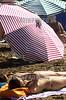 Argentina : Dos mujeres toman sol mientras otros se protejen con sombrillas.Ciudad de Pinamar, el lugar turistico mas exclusivo. / Argentina: beach. / Argentinien: Frauen beim Sonnenbaden am Strand von Pinamar. Bikini. Jugendliche. Strandschönheiten. Sonnenschirm.<br /> © Ely Negri/LATINPHOTO.org