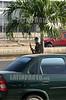 Venezuela : la guardia nacional dispara gases hacia el interior de la USM. / Venezuela : protest. / Venezuela : Unruhen in Venezuela. Tränengas - Einsatz vor der universität USM. © Juan Carlos Hernandez/LATINPHOTO.org