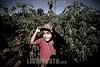 Paraguay: En Paraguay mas de 2 .600.000 hectareas de soja - el doble que en el 2001 - y en el ultimo ano se produjeron 3 ,8 millones de toneladas. Ademas de la expulsion de campesinos, los productos que se utilizan para fumigar son considerados toxicos de alta peligrosidad. El asentamiento 13 de Mayo, en el departamento de Itapua, es el escenario del intento de unas 40 familias por sobrevivir y mantener sus cultivos tradicionales en medio de ese oceano de soja. nino. / It is the history of the settlement 13 de mayo, in the area of Itapua, Paraguay. It is a group of peasant families - about 70 people - who atempt to maintain their identity and their unique relationship with the land, within the framework of the advance of the soy monocultive. There are in Paraguay 2.600.000 hectares of soy - twice as much as in 2001- and in the last year 3.8 millons of tons have been produced, dispite the drought. / C'est l'histoire de l'etablissement 13 de Mayo, dans la region de Itapua, Paraguay. C'est un group de familles paysannes - un total de 70 personnes - qui essayent de soutenir leur identite et leur liaison avec la terre, dans le cadre de l'avancee du monocultive du soja. Au Paraguay, il y a 2.600.000 hectares de plantation de soja - deux fois plus que dans l'annee 2001 - et dans l'annee derniere 3.8 millons de tonnes de soja ont ete produits malgre la secheresse. / Sojabauern in Encarnacion. Landwirtschaft. Sojaanbau. Kind - Junge in einem Sojafeld. © Sebastian Hacher - Olmo Calvo Rodriguez/LATINPHOTO.org