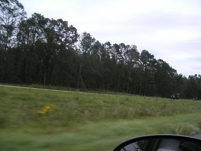 You can see the National Guard on the road.