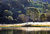 Lake Catani.