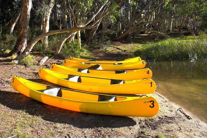 Canoes.