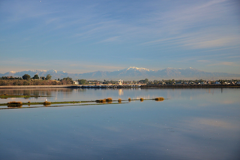 Early-morning at Bolsa Chica with the snowy San Gabriel Mountains in the distance, January 13 2011.
