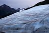 exit glacier0001_7