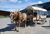 Dawson City0001_9