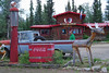 Rich at Moose Creek0001