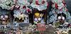 """Bolivia : Dia de las natitas (calaveras humanas objeto de veneracion) 8 . de noviembre en el cementerio general de La Paz. Cada ano, aumentan los adeptos de esas calaveras guardianas, que vigilan y ayudan los hogares de las capas de poblaciones mas demunidas del occidente boliviano. Esas calaveras, generalmente """"adoptadas"""" y encontradas, son, segun sus duenos, milagrosas y temibles. / Day of the Skulls is a festival celebrated in La Paz, Bolivia on November 9th. (human skulls object of veneration) Religion and Mythology. Bolivia's bizarre skull festival in La Paz falls on 9th November, and closes the week-long All Saints celebrations. / Bolivien: Das Schädelfest Fiesta de las natitas ist ein religöser Brauch. Gläubigen bringen die Totenschädel ihrer Verwandten und Freunde zum Zentralfriedhof in La Paz. Dort werden sie an der Fassade der Friedhofskirche aufgebahrt. Durch die Segnung der Totenköpfe werden die Verstorbenen das folgende Jahr die Gläubigen beschützen und ihnen Glück bringen. In die Mundhöhle der Schädel werden Zigaretten zum symbolischen Rauchen gelegt. Rauchen kann tödlich sein!© Alejandro Azcuy/LATINPHOTO.org"""