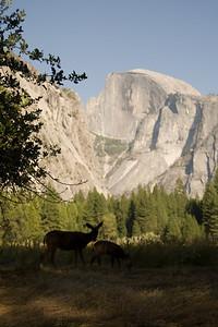 2008-09-11 - Yosemite (14 of 72)
