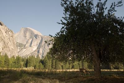 2008-09-11 - Yosemite (11 of 72)