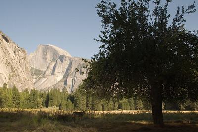 2008-09-11 - Yosemite (9 of 72)