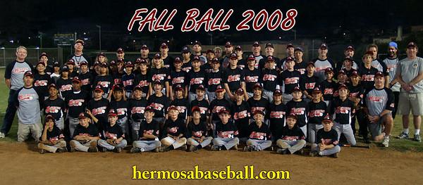 2008 Fall Ball