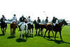 Polo players<br /> photo by Rob Rich © 2008 516-676-3939 robwayne1@aol.com