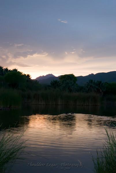 Agua Calienta Park in Tucson Arizona