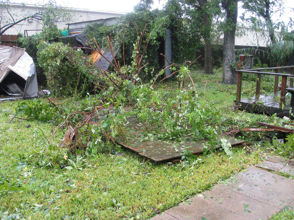 View from the back door of part of the crushed shed and the downed fence between me and the neighbor.