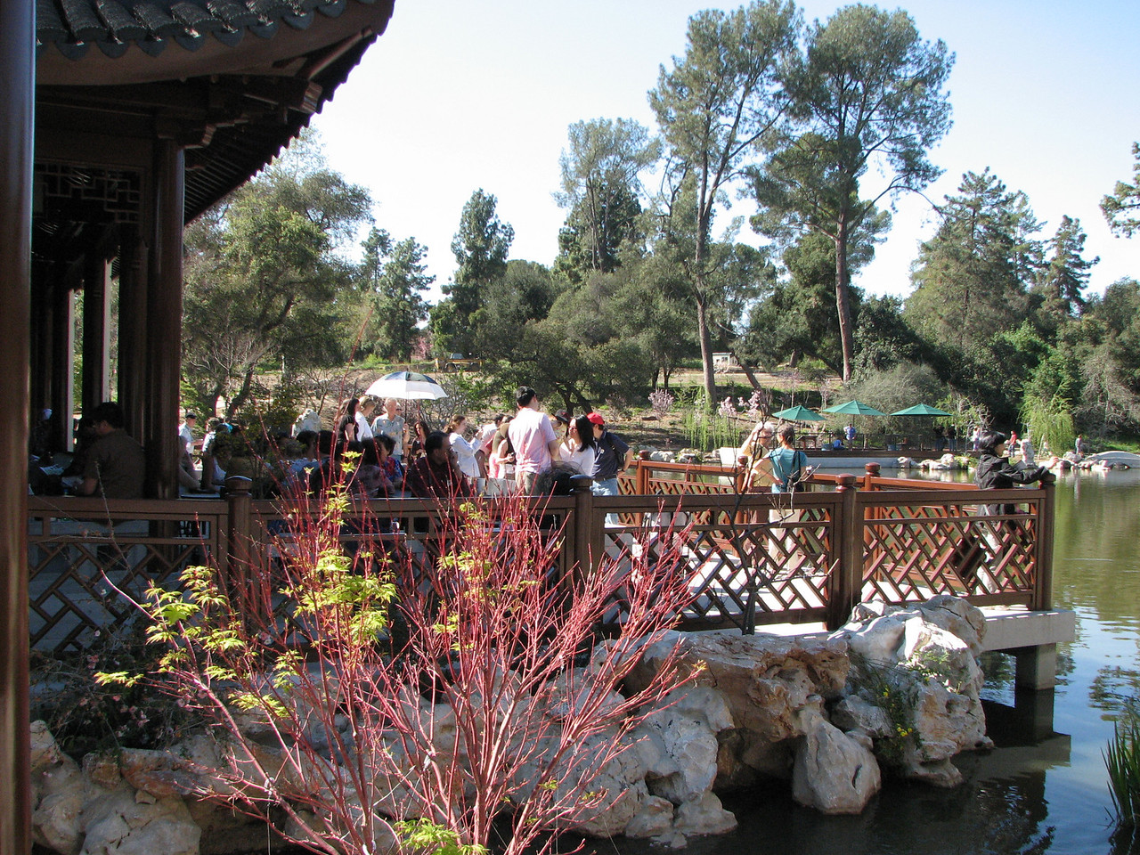 2008 03 09 Sun - New Chinese garden - Yuchun photo 2