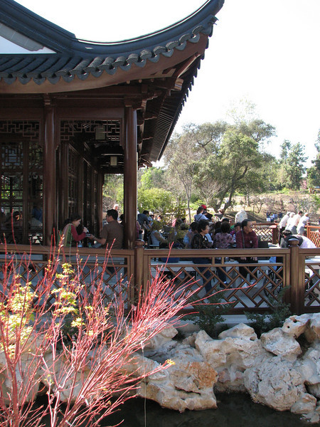 2008 03 09 Sun - New Chinese garden - Yuchun photo 1