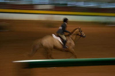 This is my favorite of the blurred background shots. I like that the head of the horse is what is clearest.