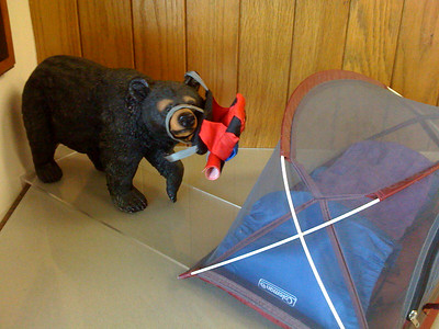 I've never wanted anything more than to own this diorama from the ranger station