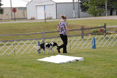 2009 4H County Obedience and Showmanship