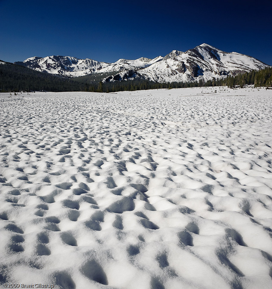 """Dana Meadows and Cathedral Range"" Yosemite National Park, CA  Section: Professional Enlargements Class: Yosemite Place: <u>Honorable Mention</u>"