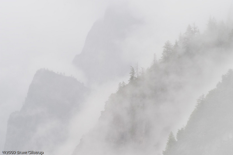 """""""Fog and Trees"""" Yosemite National Park, CA  Section: Professional Enlargements Class: Natural Landscapes Place: <b><font color=""""red""""><u>2nd</u></font></b>"""