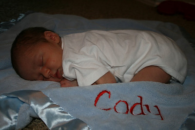 2009 November Cody