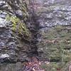 2009-11-21-019 Ozark Plateau NWR Field Trip