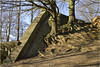 Overgrown Bunker (1)