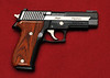 Sig Sauer P226 Equinox w/Hogue Coco Bolo grips and LaserMax Guide Rod laser (not shown)