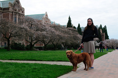 Picture from the University of Washington