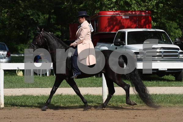 Ivanhoe Horse Show 2010-Country Pleasure Classes