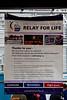 Relay for Life, Ventura, Ca. 2010