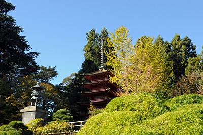 2010_San_Francisco_November0011