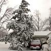 2010-02-29-204 Snow at Home Yard Bixby