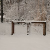 2010-02-29-202 Snow at Home Yard Bixby