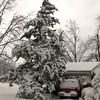 2010-02-29-205 Snow at Home Yard Bixby