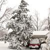 2010-02-29-206 Snow at Home Yard Bixby